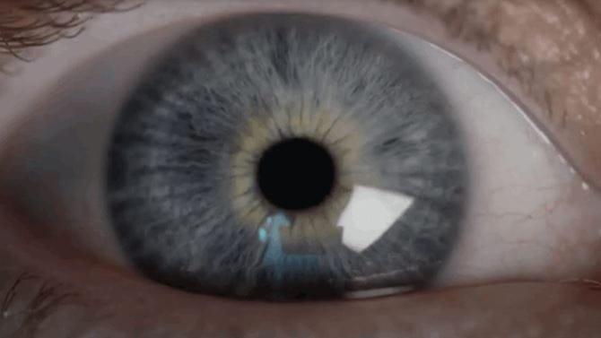 Close-up of a blue eye